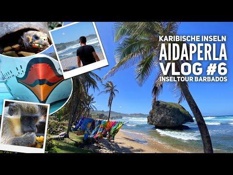 AIDA Vlog #6: Karibische Inseln mit AIDAperla - Inseltour Barbados