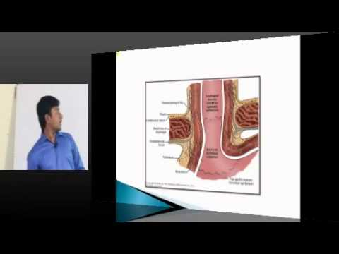 NEETPG Coaching Surgery Topic 01  ESOPHAGUS Part 01