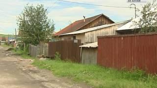 Три случая бешенства у домашних животных зарегистрировано в Горно-Алтайске