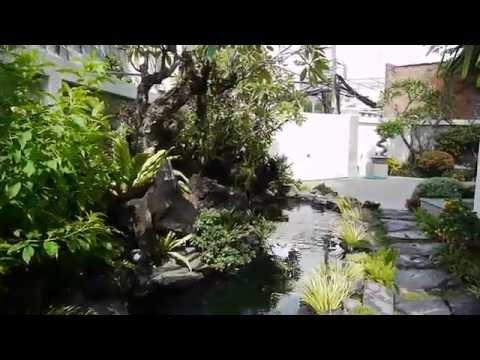 SÂN VƯỜN, HỒ KOI BƯỚM VÀ CỤM LAN MỚI NHÀ TÂN HÒA ĐÔNG NGÀY 19 9 2012
