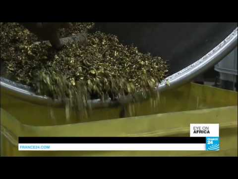 Uganda: Inside the country's very suspicious gold business