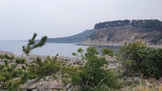제주도 서귀포 새섬 2