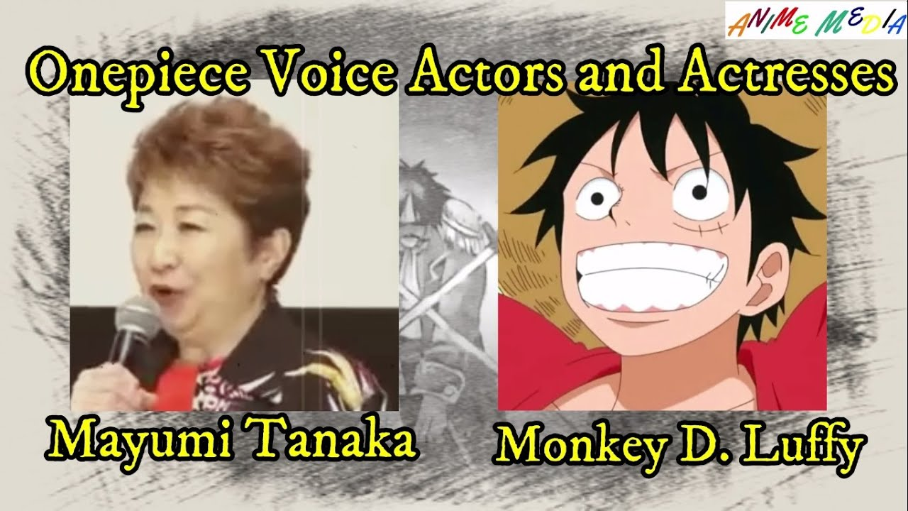 Voiced most times by colleen clinkenbeard, mayumi tanaka. Onepiece Strawhat Pirates Crew Voice Actors Youtube