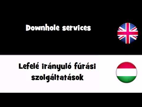 SAY IT IN 20 LANGUAGES = Downhole services