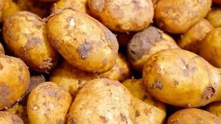 В каком виде лучше есть картофель при диете?