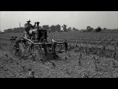 Mechanization on the Farm in the Early 20th Century