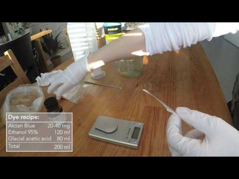 Diaphonization: EP04 - Cartilage Staining (Alcian Blue)