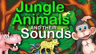 jungle animals and their sounds learning for kids
