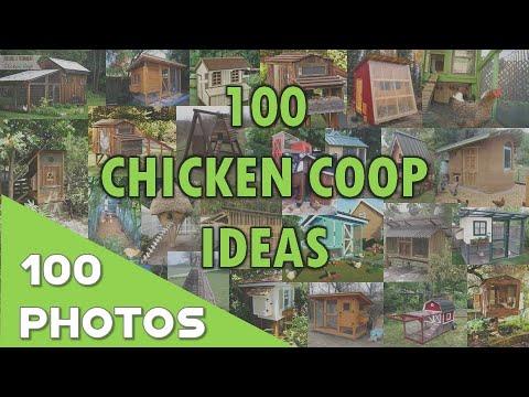 100 Chicken Coop Ideas