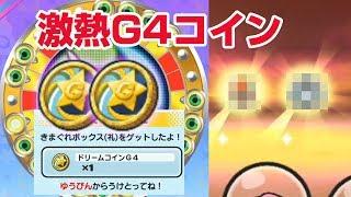 【ぷにぷに攻略】G4コインって確率どおよ? 閻魔猫王マタタビ きまぐれゲート