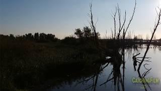 The Biesbosch - Trailer