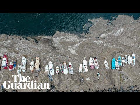 'Sea snot' outbreak off Turkish coast raises environmental alarm
