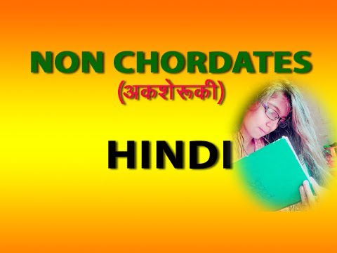 NON CHORDATES IN HINDI