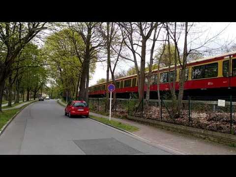 Die S Bahn 1 am Schlachtensee(1)