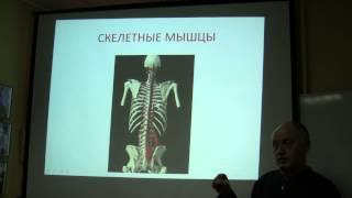 видео Аппликатор Ляпко Коврик малый
