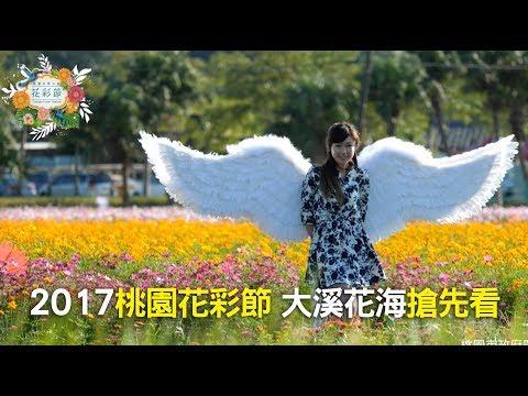 2017桃園花彩節 「大溪場」搶先看