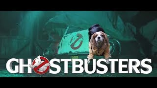 Ghostbusters 2020 Teaser Trailer Puppy