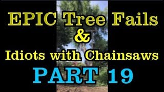 PART 19 - EPIC tree fails around the world compilation & IDIOTS with chainsaws