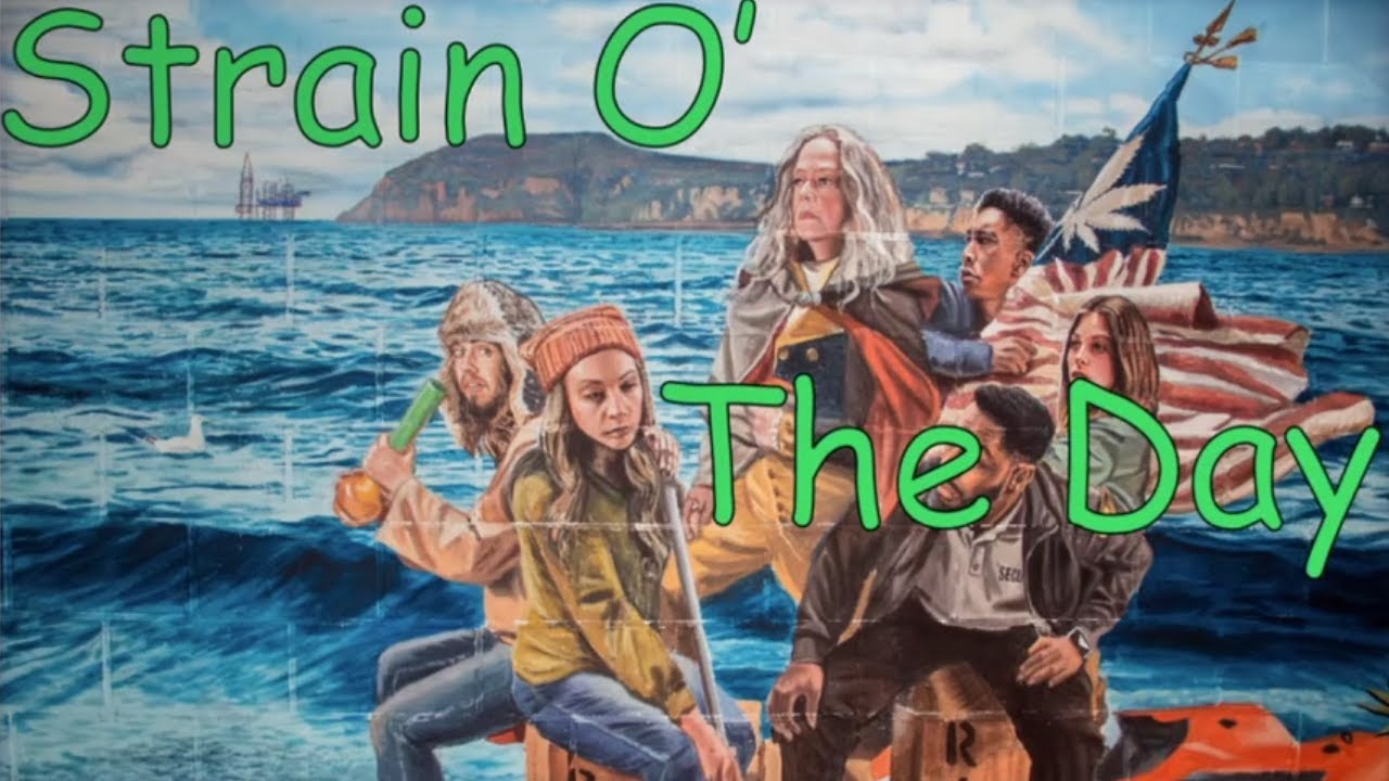 Download Disjointed: All clips of Strain Of the Day (Season 2)