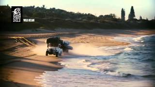 KLEFF2012 Trailer - Wild Ocean
