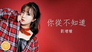 劉增瞳 - 你從不知道『你對我多麽重要。』【♫ 音樂蝸歌詞版MV ♫】