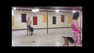 Rochester Canine Academy - Group Class