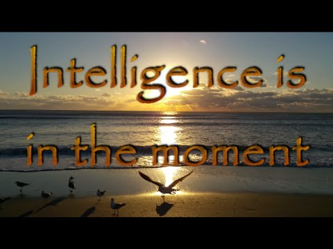 Intelligence is in the moment