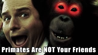 Primates Are NOT Your Friends