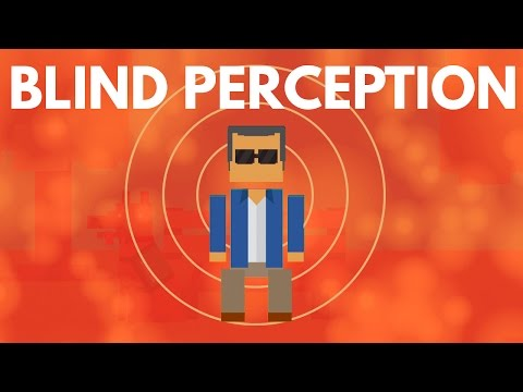 Thumbnail: How Do The Blind Perceive The World?