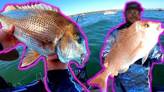 Insane SNAPPER fishing   Australia   Port Phillip Bay   (Bait and plastics)