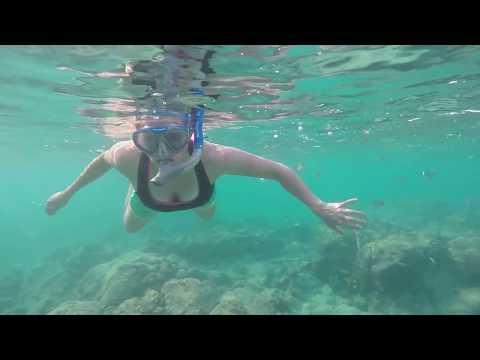 Aruba | Exploring the Island Beaches Ocean & Food