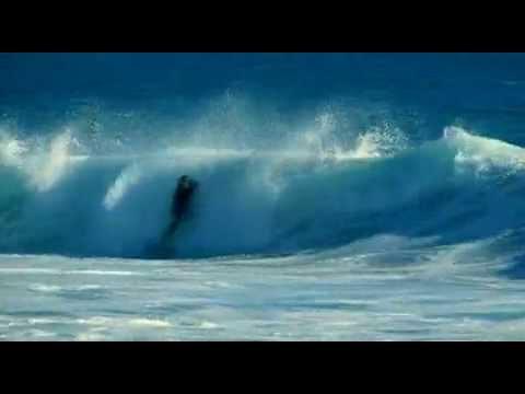 surf dude cruise