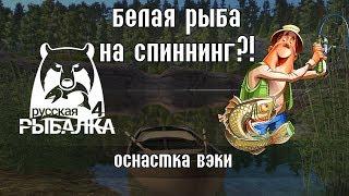 Белая рыба на спиннинг! Это реально - Русская Рыбалка 4/Russian Fishing 4