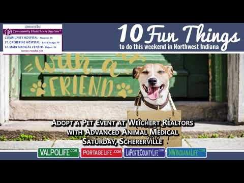 10 Fun Things November 9 - 11, 2018