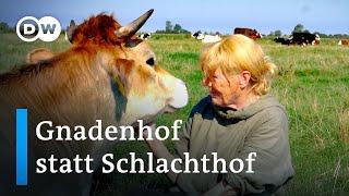 Ein Altenheim für Tiere an der Nordseeküste | Fokus Europa