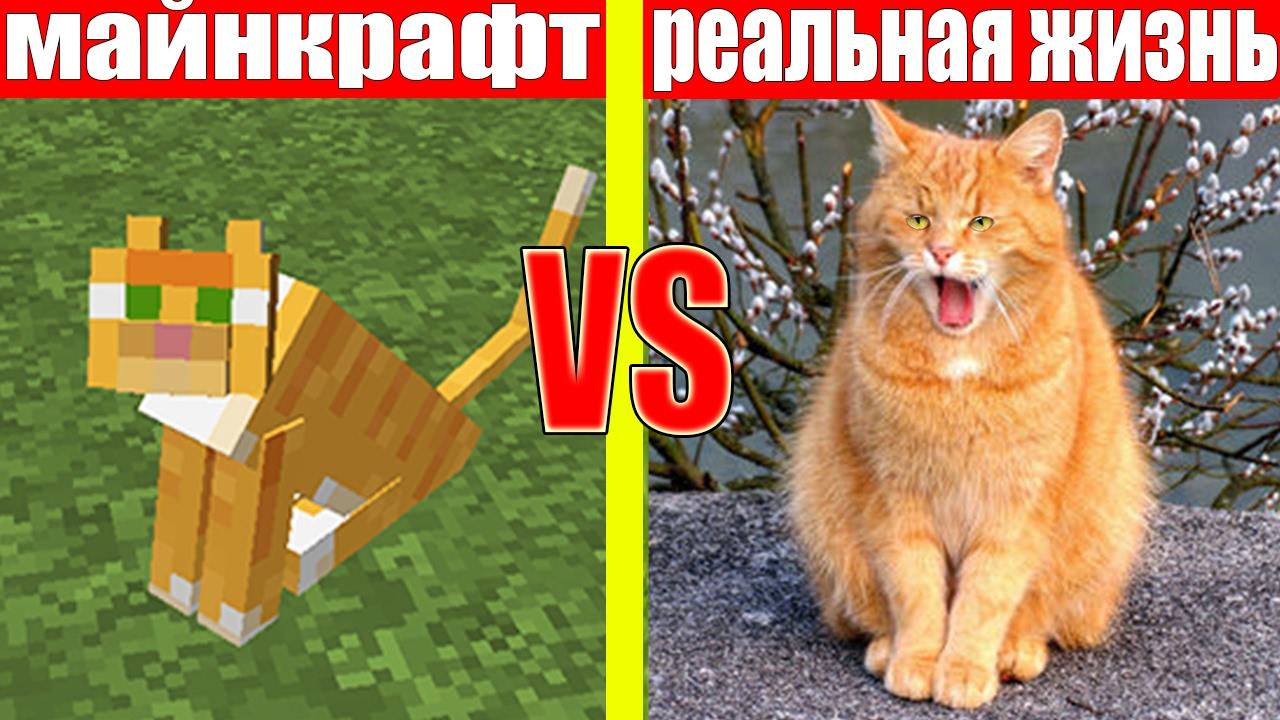 The sims 3 university life (студенческая жизнь) скачать торрент.