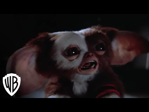 Gremlins 2:  The New Batch -- Gremlins Multiply