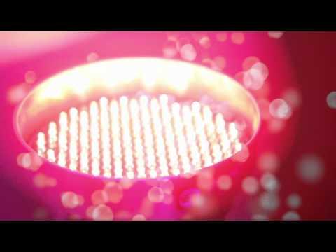 equinox-storm---wedding-disco's-&-mood-lighting