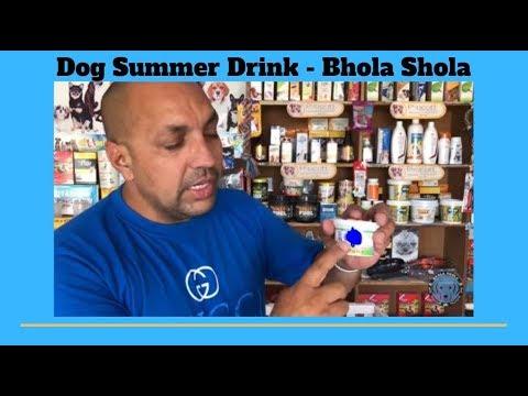 Pet Care - Dog Summer Drink -  Bhola Shola