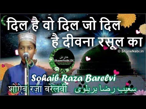 दिल है वो दिल जो दिल है दीवना रसूल का | Shoaib Raza Barelvi Naat Dil Hai Woh Dil Jo Dil Hai Deewana