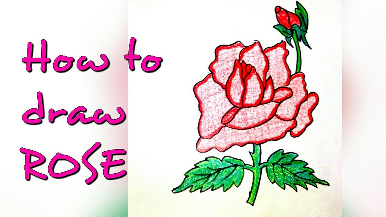 Drawing Tutorial How To Draw Rose Flower Step By Step Easy