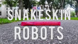 Snakeskin Robot thumbnail