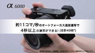 α6000動画比較コンテンツ.