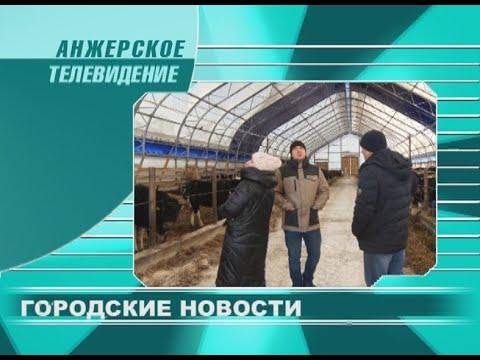 Городские новости Анжеро-Судженска от 12.02.20