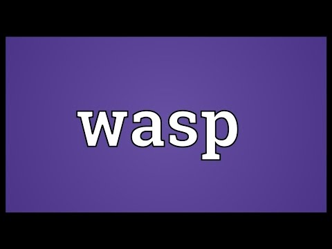 Wasp Meaning