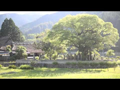 西粟倉村「上質な田舎へ」
