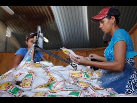 Inversiones para aumentar la calidad de la sal buscan los productores sureños