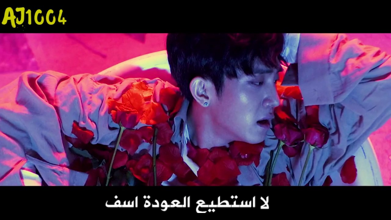 The Rose Sorry Arabic Sub