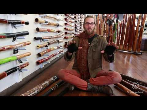 Didgeridoo Buyers Guide - Introduction - 0 Of 10