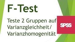F-Test / Levene-Test (Varianzvergleich) in SPSS durchführen - Daten analysieren in SPSS (12)